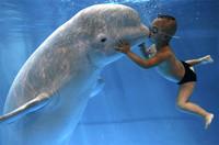 El 2007 en fotos, según Reuters (I)