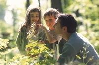 ¿Pronto el homeschooling será reconocido?