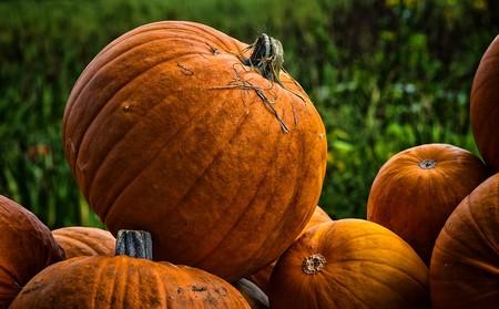 La historia detrás del uso de la calabaza en Halloween