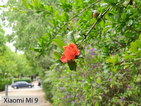 Xiaomi Mi 9 Retrato 03