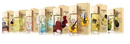 coleccion perfumes loewe
