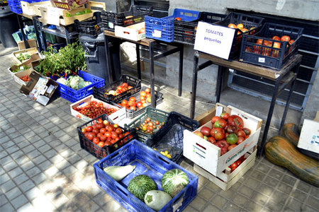Cuándo considerar un alimento ecológico