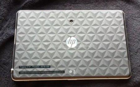 HP Slate sigue viva