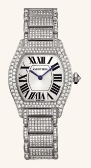 Tortue de Cartier. Reloj de lujo