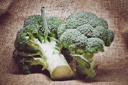Agriculture Broccoli Close Up 399629