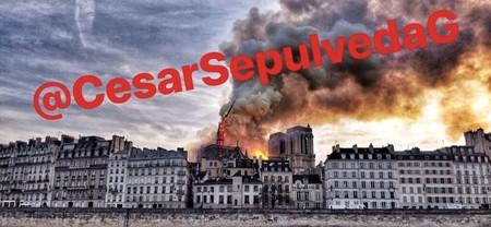 """Las fotos """"históricas"""" sobre Notre Dame, el hilo de Twitter que se ríe de las marcas de agua"""