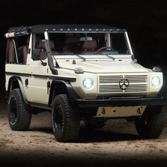 mercedes-benz-250gd-white-wolf