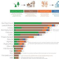 No es más ecologista el que compra local sino el que no come ternera, según este gigantesco estudio