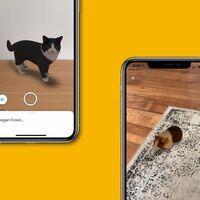 Un zoológico en el smartphone: Google añade 50 nuevos animales en realidad aumentada directo en el buscador