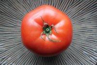El tomate, poseedor del antioxidante más potente