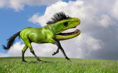 Animales fantásticos con un toque de Photoshop