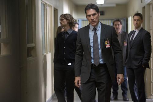 18 actores que fueron despedidos de las series en las que trabajaban