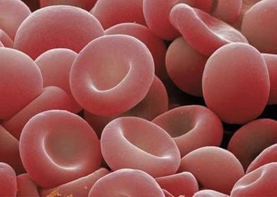 ¿Por qué la sangre tiene sabor metálico?
