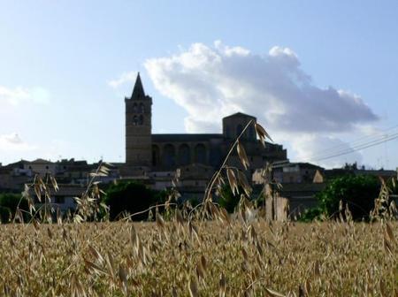 Viaje al centro de Mallorca: Sineu