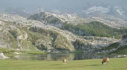 La imagen de la semana: los lagos de Covadonga en los Picos de Europa