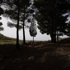 Foto 23 de 26 de la galería sony-fe-14mm-f1-8-gm en Xataka Foto