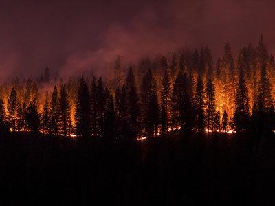 Partes remotas de Siberia están en llamas. Son partes deshabitadas, pero deberíamos preocuparnos