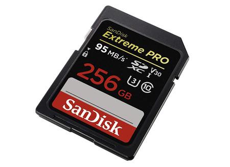 Sandisk256