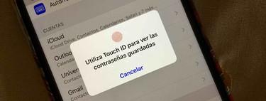 Un fallo en la beta de iOS 13 y iPadOS permite acceder a las contraseñas sin autenticarse