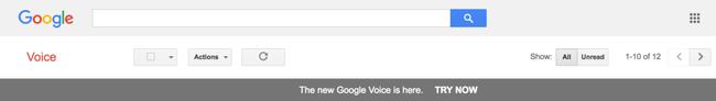 Google Voice Banner