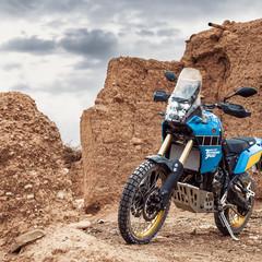 Foto 10 de 12 de la galería yamaha-xtz700-tenere-rally-edition-2020 en Motorpasion Moto