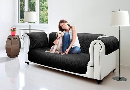 Protector Muebles Mascotas 3