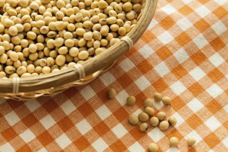 Soja: la legumbre con más proteínas y menos hidratos