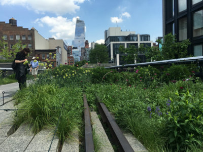 El High Line Elevated Park de Nueva York y el arte moderno