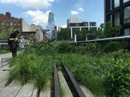 El High Line Elevated Park de Nueva York y el arte moderno