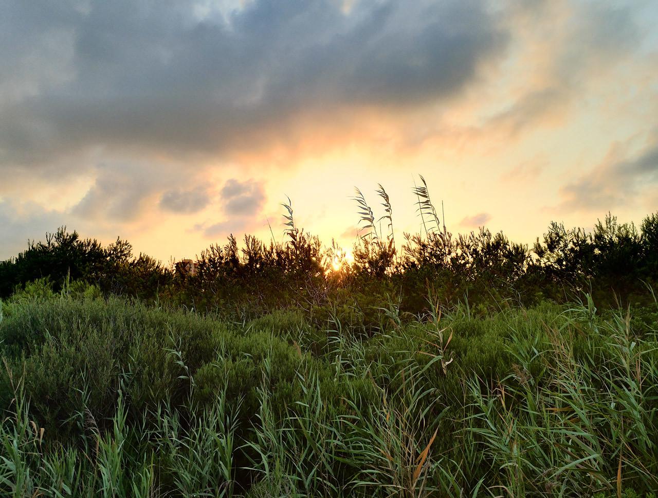 Foto de Fotos con el ASUS ZenFone AR (29/34)