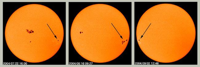 Distant spots SOHO 14 Photos Explaining 14 Major Mysteries About The Sun - TinoShare.com