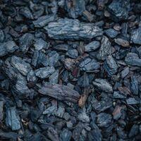Se encuentra un vínculo claro entre cocinar con leña o carbón y un mayor riesgo de enfermedades oculares importantes