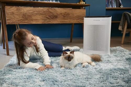 Invertir en un purificador de aire es bueno para nuestra salud (seamos o no alérgicos) y estos son los favoritos en Amazon