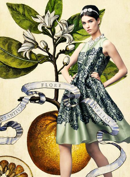 La ilustración botánica, protagonista absoluta de la nueva campaña de Dolce & Gabbana