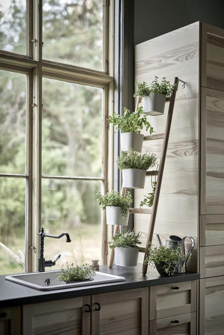 Ikea Plantas Ph131770