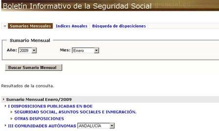 BISS: boletín informativo de la Seguridad Social
