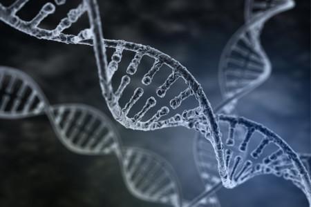 Ordenadores vivientes y nanorobots: ADN más allá de la genética