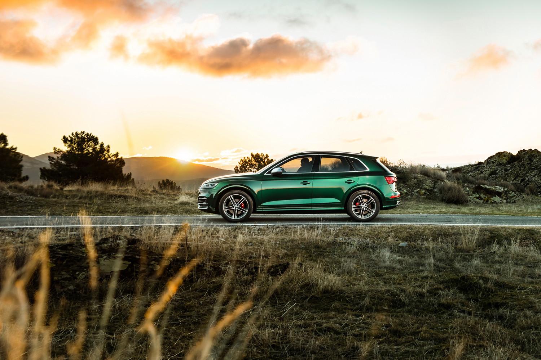 Foto de Audi SQ5 TDI 2019 (19/19)