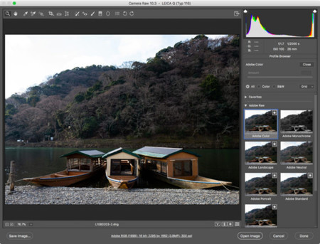 Adobe Lightroom Camera Raw Update 05