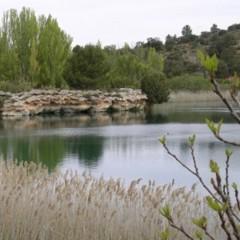 Foto 5 de 12 de la galería parque-natural-lagunas-de-ruidera en Diario del Viajero