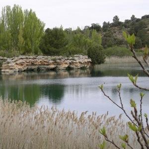 Foto de Parque Natural Lagunas de Ruidera (5/12)