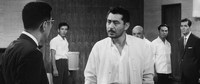 Mike Nichols dirige el remake de 'El infierno del odio'