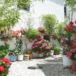 Siete pueblos con encanto en el interior de Andalucía: qué ver y qué hacer