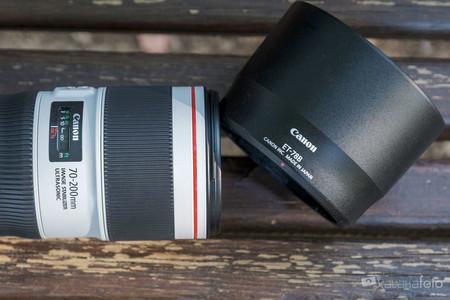 Canon70 200 F4 0475