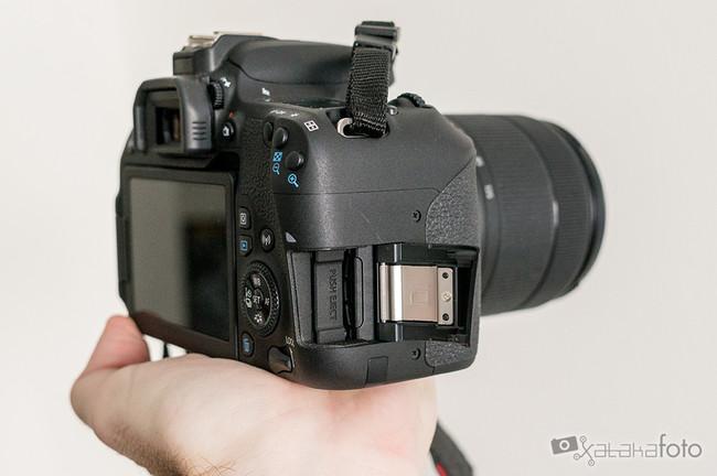 Canon77d 06642