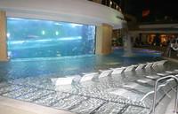 Tiburones en Las Vegas