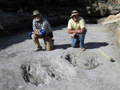 Se descubren los juegos sexuales previos de los dinosaurios