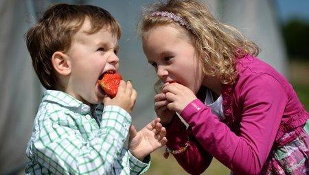 ¿La forma de alimentar a un bebé influye en su rendimiento escolar?