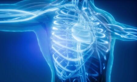 La NASA envía miles de gusanos al espacio para estudiar problemas de distrofia muscular: se crearán tratamientos más efectivos