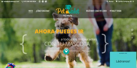 Pet Valet, la aplicación para que encuentres cuidadores de mascotas en Bogotá